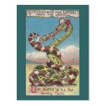 Serpientes en el nudo de un amante postal