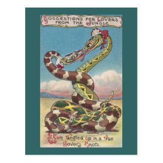 Serpientes en el nudo de un amante tarjetas postales