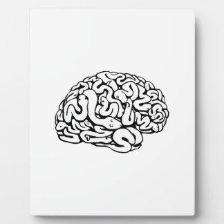 Serpientes en un cerebro placas con foto