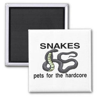 Serpientes incondicionales imán cuadrado