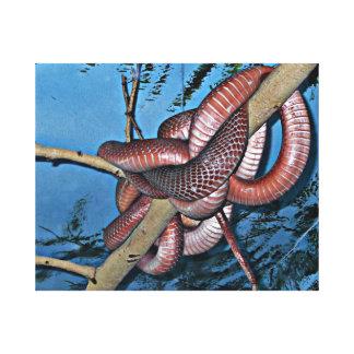 Serpientes venenosas en espiral rojo marrón impresión en lienzo