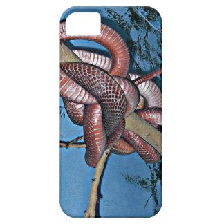 Serpientes venenosas en espiral rojo marrón iPhone 5 carcasas
