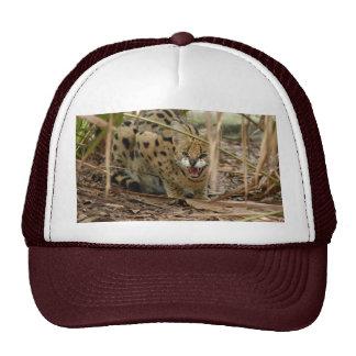 serval 005 trucker hat