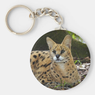 serval 015 basic round button keychain
