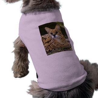 serval 015 camiseta de mascota