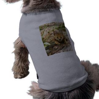 serval 019 ropa de mascota