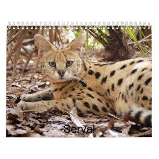 serval 025 Serval Calendarios
