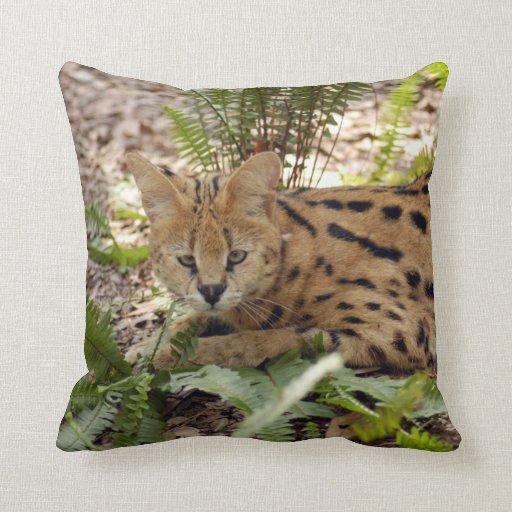 serval 029 pillows