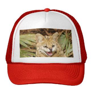 serval 032 trucker hat