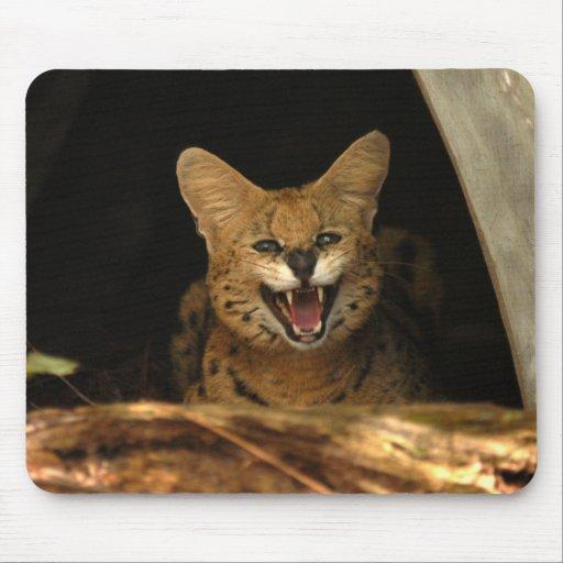 serval 040 tapetes de ratón
