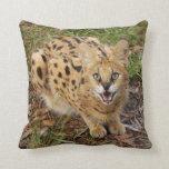 serval 044 pillow