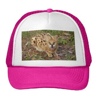 serval 044 trucker hat