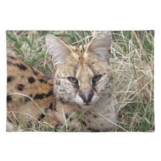 Serval cat relaxing in grass cloth placemat