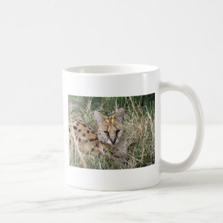 Serval cat relaxing in grass coffee mug
