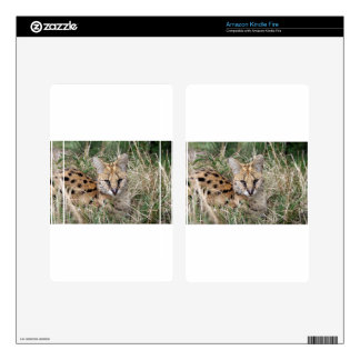 Serval cat relaxing in grass kindle fire decal