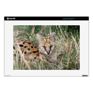 Serval cat relaxing in grass laptop skins