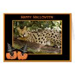Serval Halloween Cards Fancy