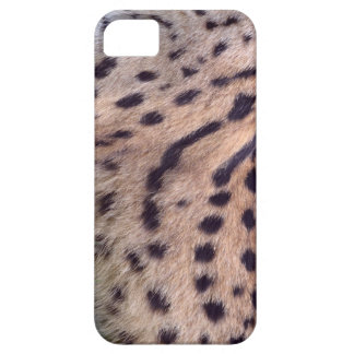 Serval in the grass iPhone 5 case