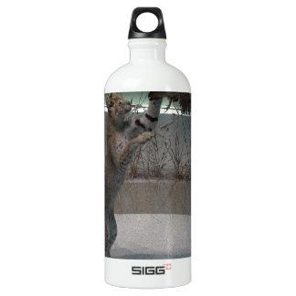 Serval intercepting a bird in mid-flight aluminum water bottle