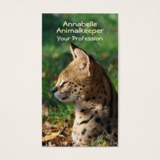 Serval wild cat business card