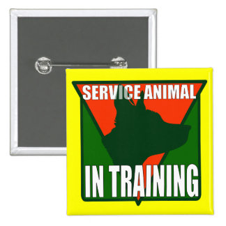 SERVICE ANIMAL TRAINING BUTTONS