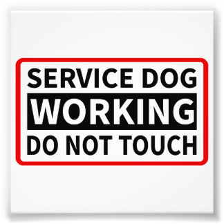 Service Dog Working Please Do Not Touch Photo Print