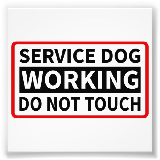 Service Dog Working Please Do Not Touch Art Photo