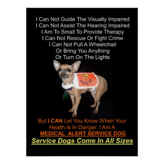 Service Dogs Come In All Sizes Poster