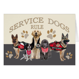 Service Dogs Rule Merchandise and Apparel Card