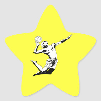 Servicio 2 del voleibol pegatina en forma de estrella