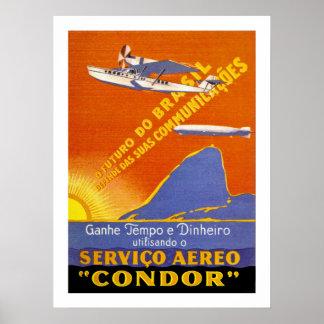 Servicio aéreo de Brazillian del ~ del cóndor Póster