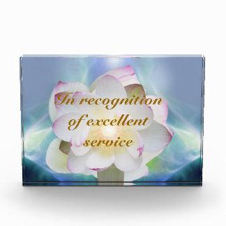 Servicio excelente del loto blanco
