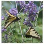 Servilleta de la cocina de las flores de mariposa