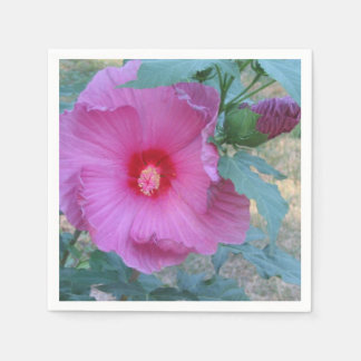 Servilleta de papel del hibisco rosado