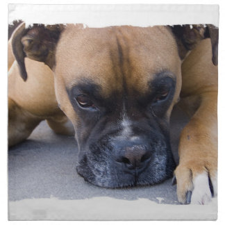 Servilleta de reclinación del perro del boxeador