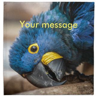 Servilleta del paño del loro lindo del Macaw del