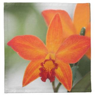 Servilletas anaranjadas tropicales de la orquídea