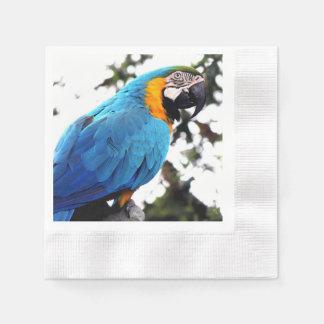 Servilletas azules del Libro Blanco del loro, Servilleta Desechable