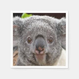 Servilletas de la koala servilleta desechable