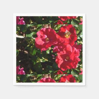 Servilletas de los rosas servilletas desechables