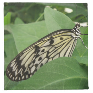 Servilletas de papel de la macro de la mariposa de