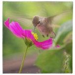 Servilletas del paño del colibrí y de la margarita