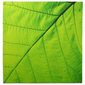 Servilletas verdes macras de la hoja