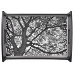 Serving Tray: Tree design Serving Tray