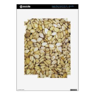 Sesame seed macro photo iPad 3 skin