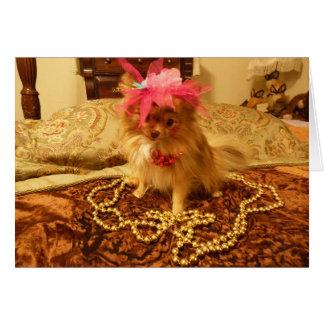 Sesión fotográfica del mascota - 8va en serie tarjeta de felicitación