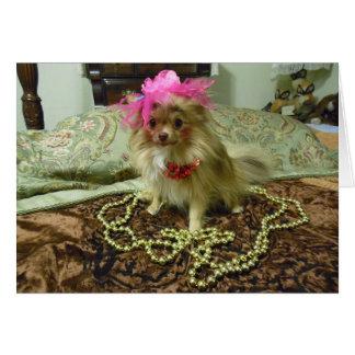 Sesión fotográfica del mascota - décimosexto en tarjeta de felicitación