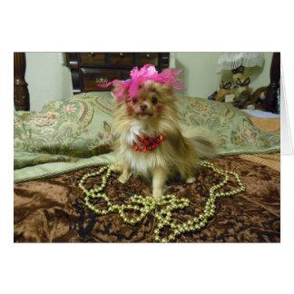Sesión fotográfica del mascota - décimotercero en tarjeta de felicitación