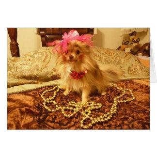 Sesión fotográfica del mascota - diecinueveavo en tarjeta de felicitación