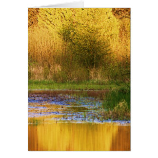 Set Ablaze Outdoor Photography Products Card